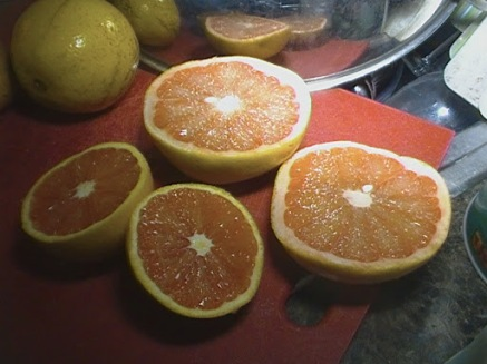VERO BEACH BLUE BELL ORANGES AND PINK GRAPEFRUIT: THE FINAL GOAL . A FLORIDA GIFT AND MONDAY NIGHT'S DESSERT. Btw, these are not juice oranges. That's Christmas and Thanksgiving....